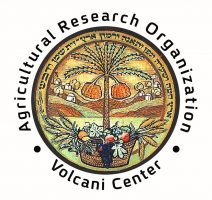 Agricultural Research Organization - Volcani Center